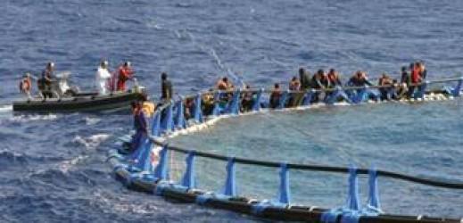 Immigrazione illegale e l'Unione europea clandestina