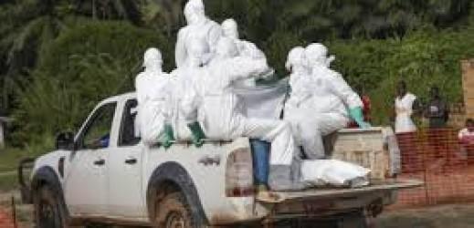 L'ebola e l'immobilismo della Comunità internazionale