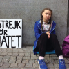Greta Thunberg, Francesco Costa, e l'errore di bersaglio
